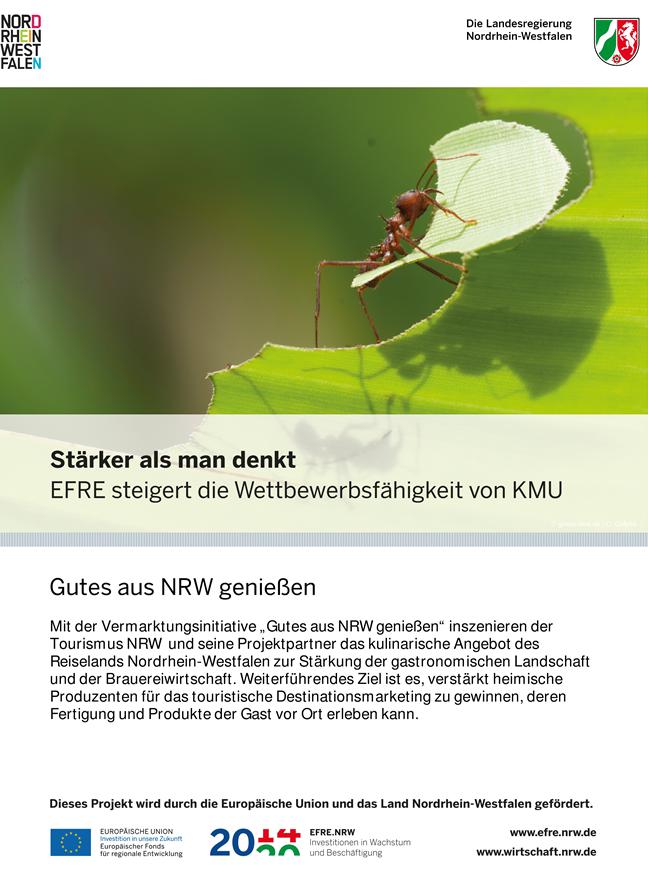 Plakat, EFRE-Projekt, Vermarktungsinitiative