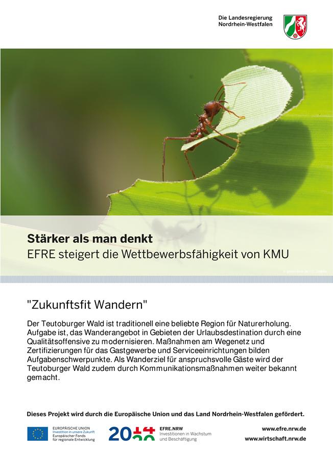 Plakat, EFRE-Projekte, Wandern, Zukunftsfit Wandern, Land des Hermann, Teutoburger Wald