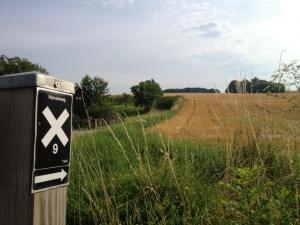 Hansaweg, Markierung, X9, Feld