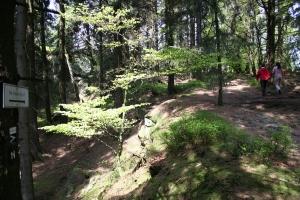 Erlebniswandern, Velmerstot, steilre Aufgang